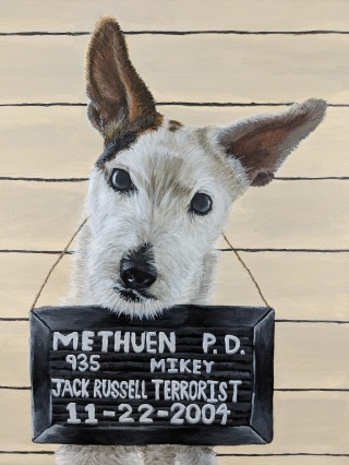 Mikey Doing Time for his Crime in Methuen - Feathers and Fur Portraits (Bryan Man)