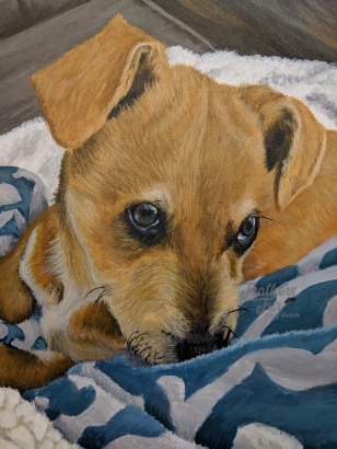 "All the Love of a Young Puppy - 11""x14"" Acrylic painting from Feathers and Fur Portraits (Bryan Man)"