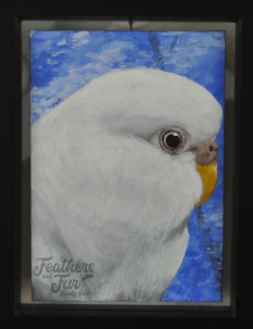 """Snowflake, the Albino Budgerigar - 6""""x8"""" Acrylic portrait from Feathers and Fur Portraits (Bryan Man)"""